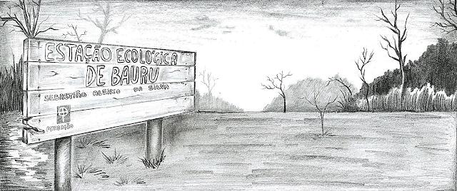 """A imagem mostra um desenho feito a lápis em preto e branco. A esquerda, uma placa retangular, como se fosse de madeira, escrito """"Estação Ecológica de Bauru Sebastião Aleixo da Silva"""". A direita, se encontra árvores secas e queimadas."""