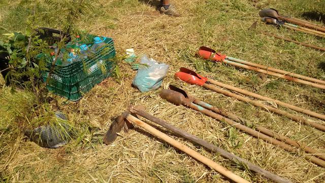 A foto mostra equipamentos de plantio no chão. Tem enxada, pegador de terra, uma caixa de plástico com garrafas de água e uma muda de planta. O dia está ensolarado e o chão está coberto de grama.