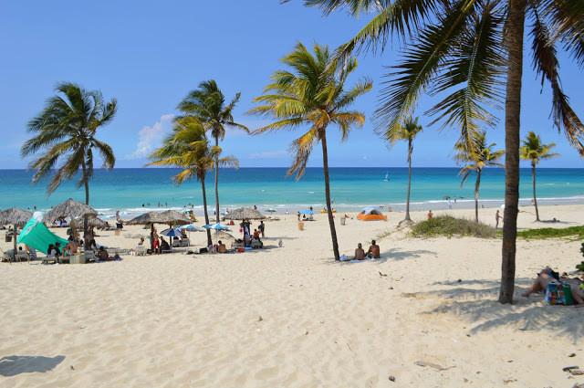 Praia: palmeiras, banhistas e o mar ao fundo