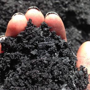Como o biochar pode nos ajudar a combater o aquecimento global