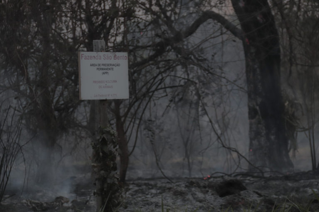 A foto mostra a reserva queimada e muita fumaça.