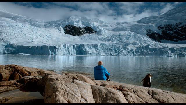 Cena do filme, com uma pessoa ao lado de pinguim observando uma geleira.