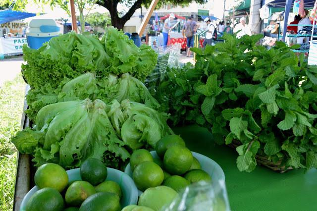 A foto mostra uma mesa com um pano verde, em cima da mesa tem limões, pés de alface e pés de rúcula. Ao fundo se vê um movimento de pessoas, pois estão em uma feira livre.
