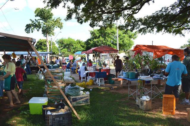 A foto mostra pessoas em uma feira. O dia está ensolarado, nos cantos esquerdo e direito tem barracas, o chão é grama e no fundo tem grandes árvores. As pessoas estão espalhadas, tem caixas de alimentos no chão.