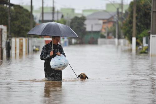A foto mostra um homem andando em uma rua alagada, ele está com um guarda-chuva e leva seu cachorro na coleira. O cão está só com a cabeça para fora da água.