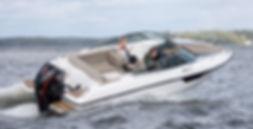 Flipper 650DC1.jpg