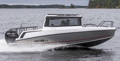 FALCON C7-8.jpg