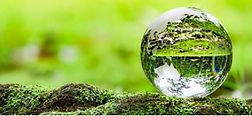 緑地球.jpg