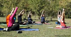 Rando Yoga Nocito