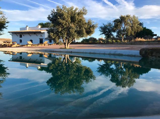 La villa avec piscine