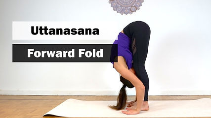 Yoga Basics Uttanasana (Forward Fold Pose)