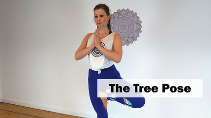 Explanation on how to do the Tree Pose