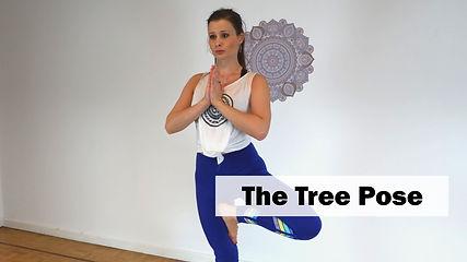 Yoga Basics Tree Pose
