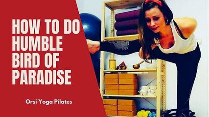 How to Do Humble Bird of Paradise