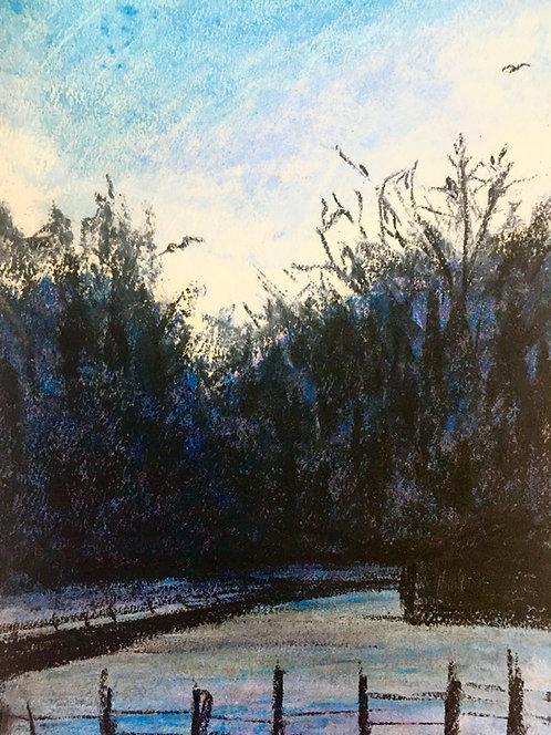 Stewart Road Fine Art Print