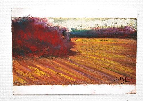 Madison - 2x2.75 Soft Pastel Painting Jen McKinney Fine Art.jpg