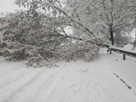 Nevicata: raffica di interventi dei Vigili del Fuoco