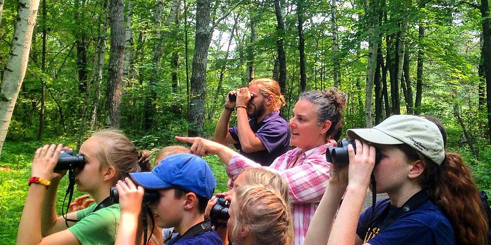 Guided Ecology Hike