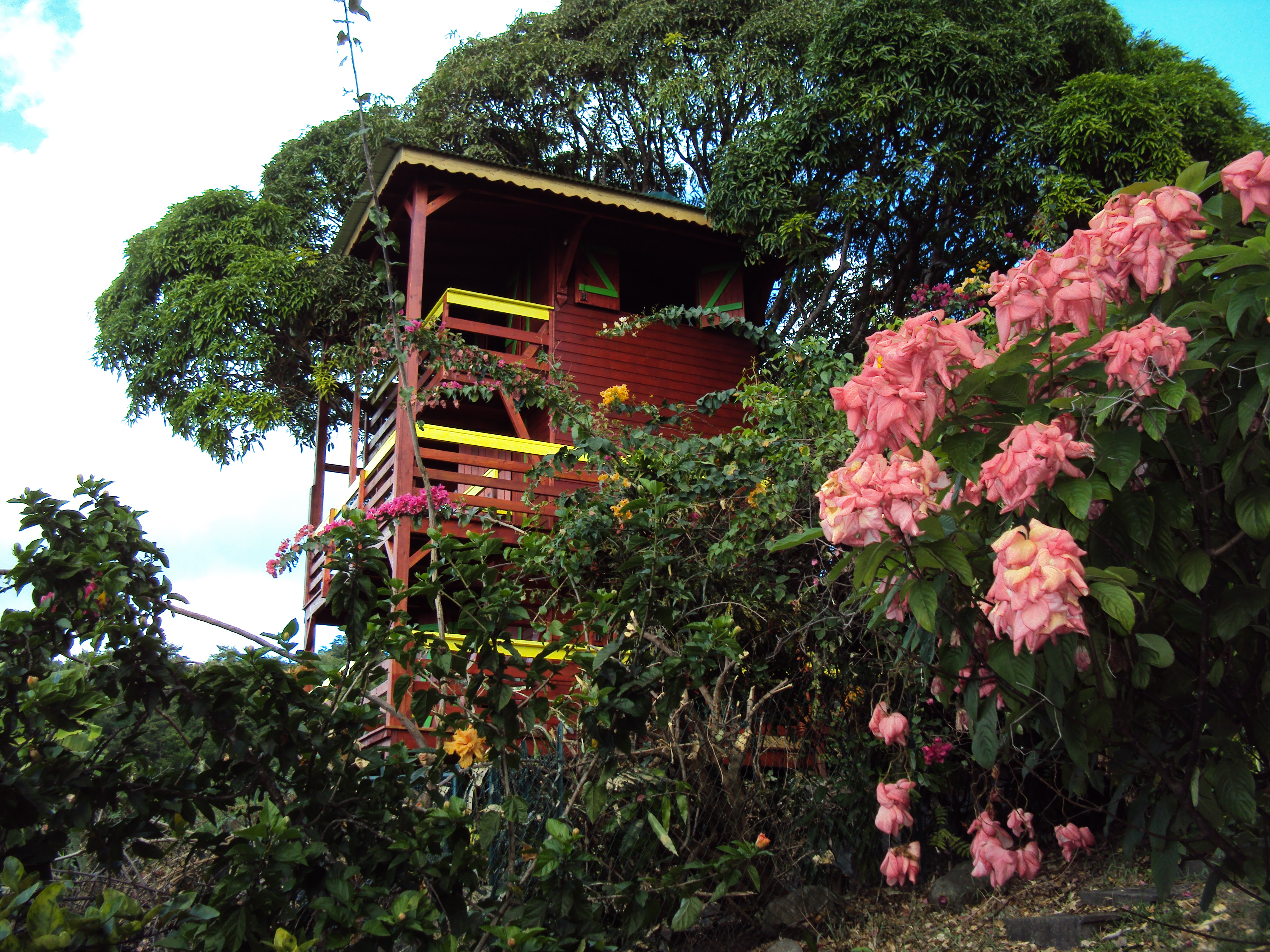 Guadeloupe Paradisio