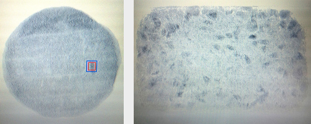 X-ray detectable images in mixed nut Museli