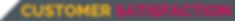 Customer Satisfaction - TEXT BANNER.png