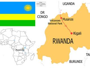 Rwanda: Mountain Gorillas in the Land of a Thousand Hills