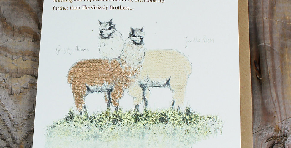 Alpacaly Ever After - Grizzly Brothers Greeting Card
