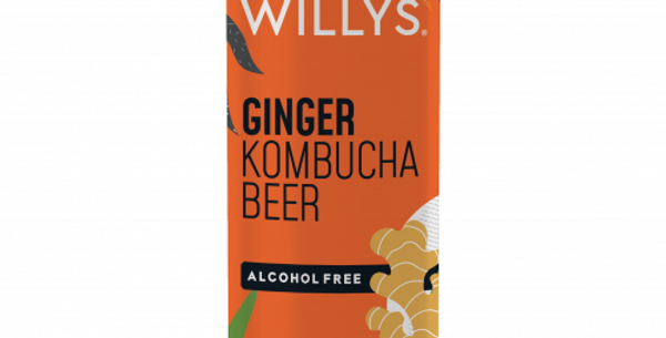 Willy's Kombucha Beer (Ginger) 12 x 250ml