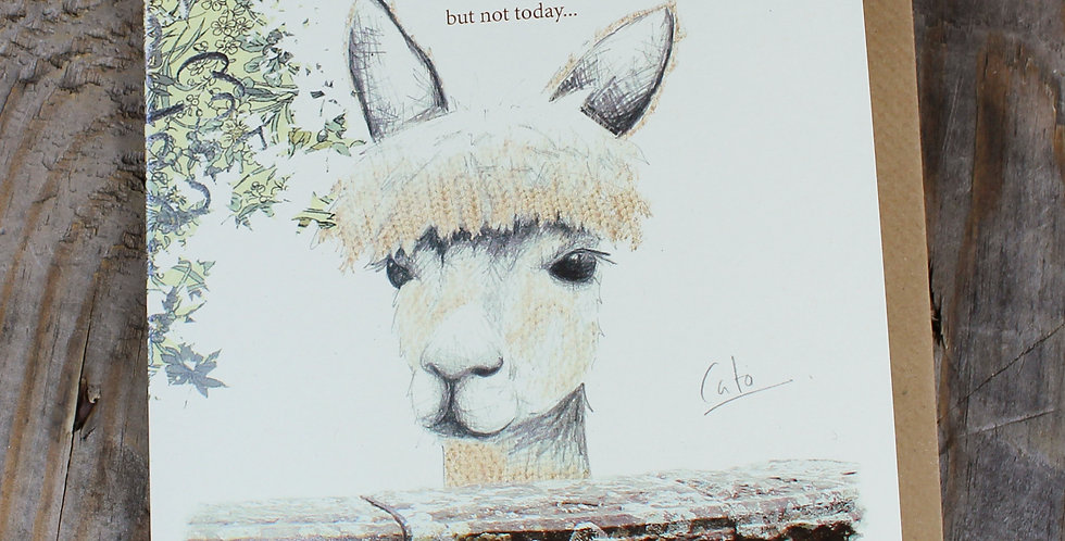 Alpacaly Ever After - Cato Greeting Card