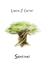 Screenshot of Sentinel cover.png