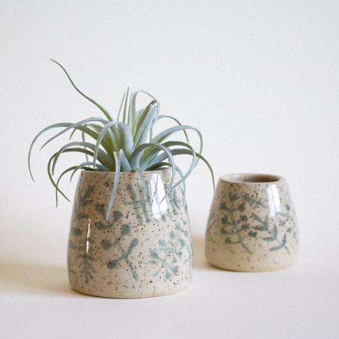 Green Fern Pots
