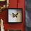 Thumbnail: Framed Papilio Thoas