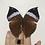 Thumbnail: Kallima Paralekta Paralekta (Indian Leafwing)