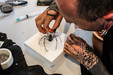 Spiders and Scorpions taxidermy class workshop Melbourne Australia