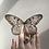 unmounted Idea Blanchardi Marosiana specimen