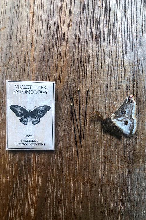 Australian Entomological Supplies Black Enamelled steel pins