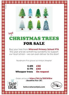 PTA XMAS TREES 2020 poster.jpg