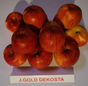 "Obuoliai ""J.Gold Dekosta"""