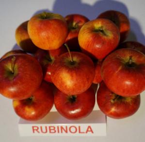 """Obuoliai """"Rubinola"""""""