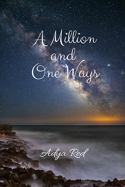 A million and one ways Adya Red