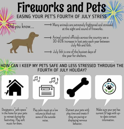 Celebrating Safely with Pets - Happy 4th of July