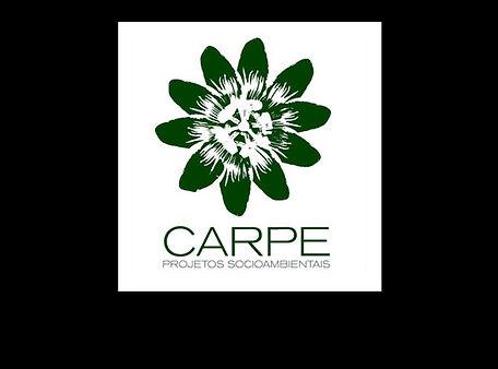 YDCARPE.jpg
