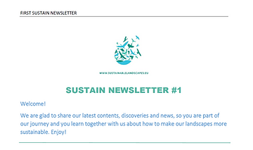 Newsletter 1.PNG