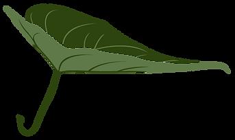 RFCP_Logo_LEAF-01.png