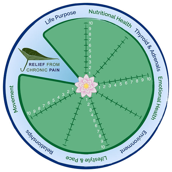 CPROC Freedom Wheel.JPG