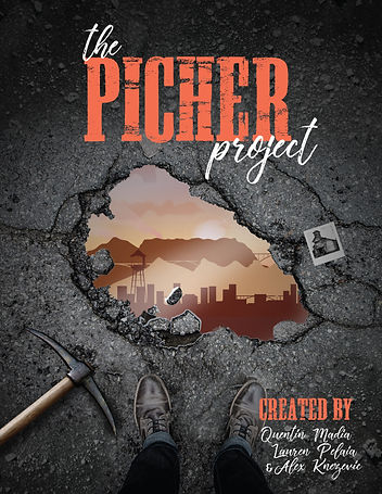 PIcher-Project_V1.jpg