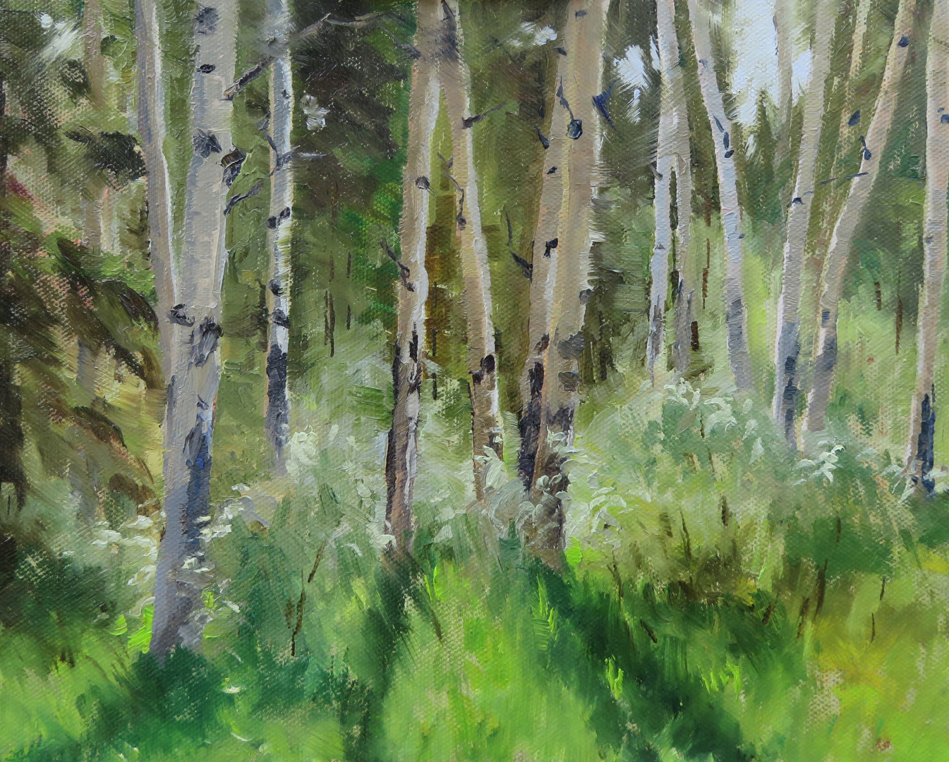 Aspen Grove at Patricia Lakes, Jasper Na