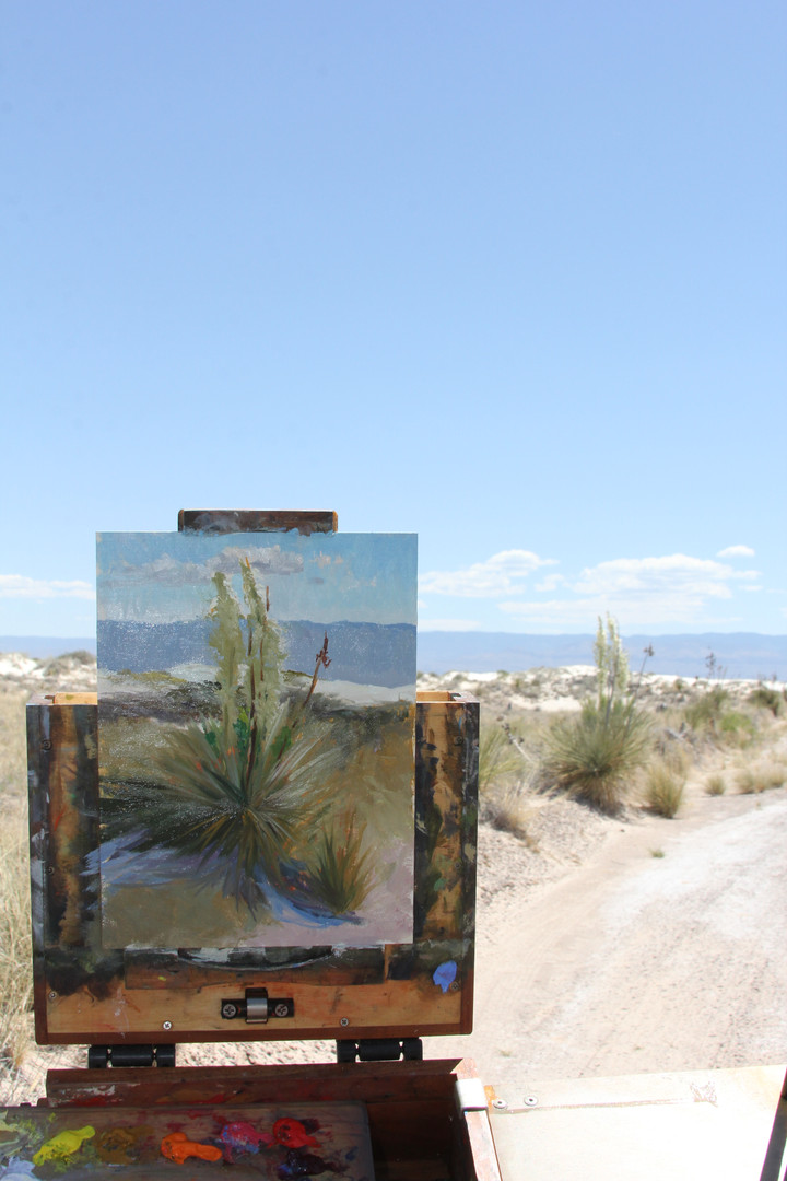 Jan Jewell painting at the White Sands o