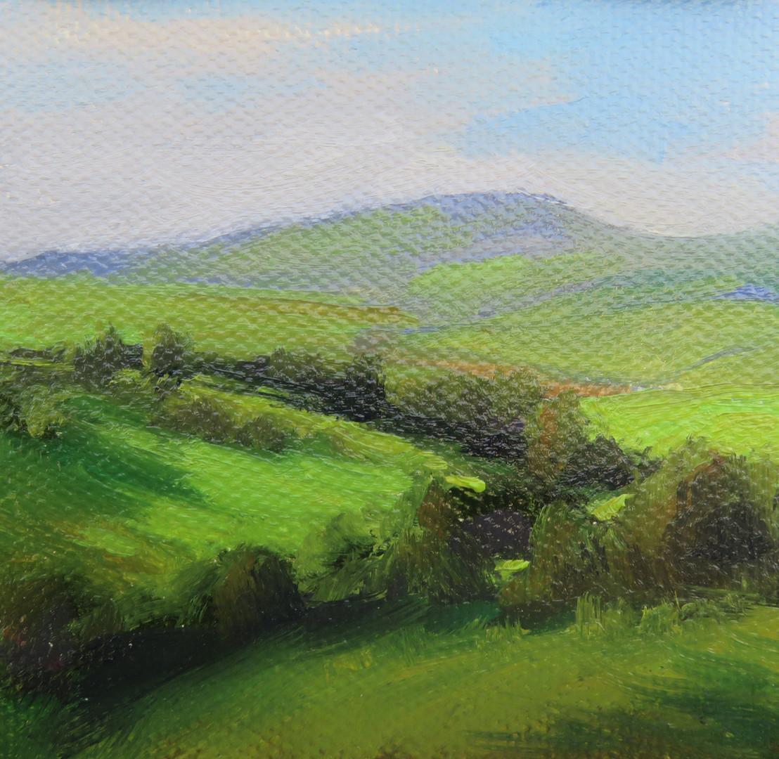 Windy Hillside in Yorkshire