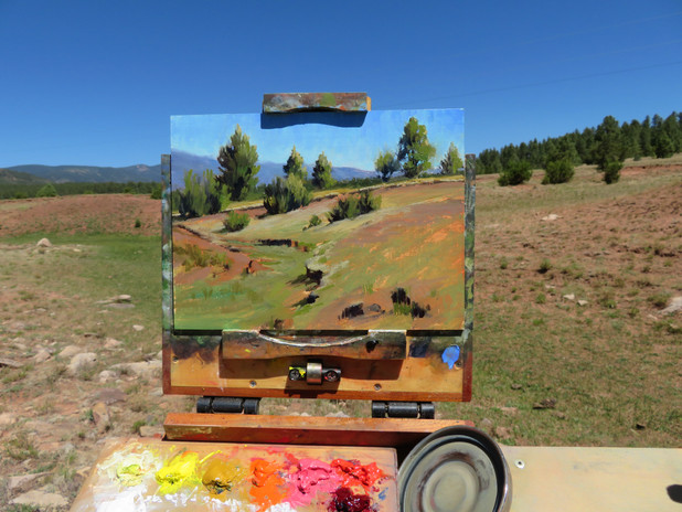Jan Jewell painting in New Mexico